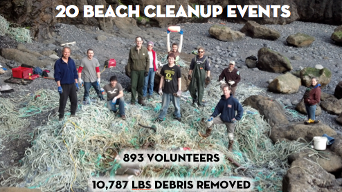 beach_cleanups