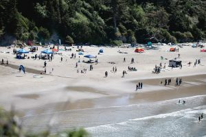 Youth Score Surf and Stewardship at 11th Annual Otter Rock and Roll